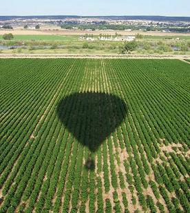 Balloon Shadow c. Lanelli 2007